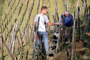 Travail du sol, Antoine et Henri